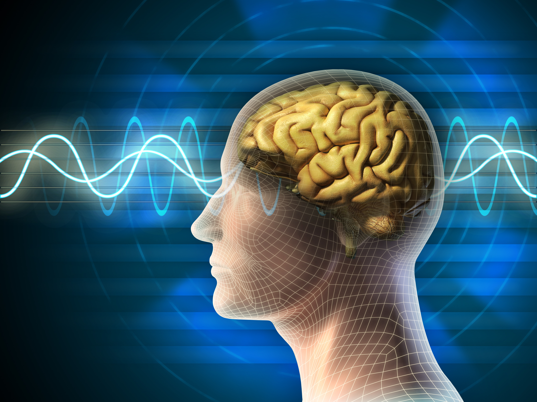 brain-friendly language learning